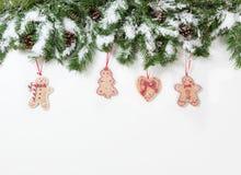 Snöig trädfilialer för jul och kakaprydnader på vitbaksida Royaltyfri Bild