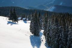 Snöig trädställning på gräsmattan De höga bergen täckas med snö Den gamla kojaställningen i dalarna kall dagvinter Royaltyfri Fotografi
