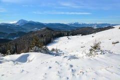 Snöig trädställning på gräsmattan De höga bergen täckas med snö Den gamla kojaställningen i dalarna kall dagvinter Arkivbild