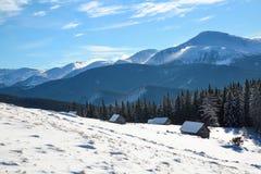 Snöig trädställning på gräsmattan De höga bergen täckas med snö Den gamla kojaställningen i dalarna kall dagvinter Arkivfoto