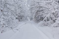snöig trail Fotografering för Bildbyråer