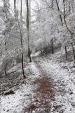 snöig trail arkivfoto
