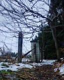 Snöig trees i vinter och lantlig väg arkivbild
