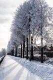 Vinterkaj. Yaroslavl Ryssland Royaltyfri Bild
