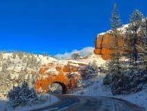 Snöig tunnel för Dixie delstatspark Royaltyfri Foto