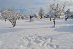 Snöig väder arkivbild