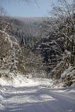 Snöig väg Royaltyfria Foton