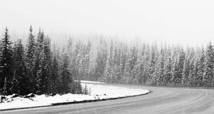 snöig väg Royaltyfria Bilder