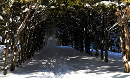 Snöig väg i den Abovyan staden i vinter Royaltyfria Bilder