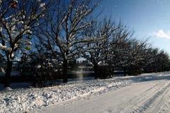 Snöig väg i den Abovyan staden i vinter Royaltyfria Foton