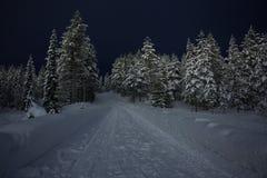 Snöig väg i finlandssvenska Lapland Royaltyfri Bild