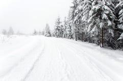 Snöig väg i skogen Arkivbild