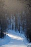 Snöig väg och skogsmark i ett snötjut med skuggor Royaltyfri Fotografi