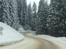 Snöig väg till Mt spokane Arkivbild