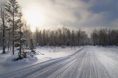 Snöig väg till och med skog med snövesslaspår i en ljus vinterdag Royaltyfri Foto