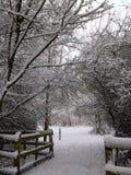 Snöig vänd Royaltyfri Fotografi