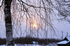Snöig vinter. royaltyfri foto