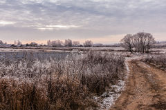 Snöig vinter Arkivbild