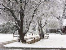 snöig vinter för kall plats Arkivfoton
