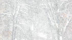 snöig vinter för liggande stock video