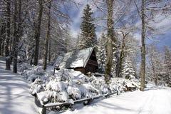 snöig vinter för liggande Fotografering för Bildbyråer