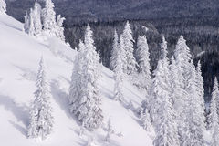 snöig vinter för liggande Royaltyfri Foto