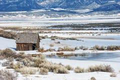 snöig vinter för plats Arkivbilder