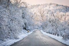 snöig vinter för skogväg Arkivbilder