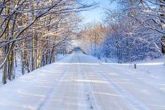 Snöig vinter i Polen Royaltyfri Foto