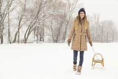 Snöig vinterdag Royaltyfria Foton