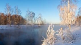 Snöig vinterskog med buskar och björkträd på bankerna av floden med dimma, Ryssland, Uralsna, Januari royaltyfria foton