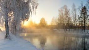 Snöig vinterskog med buskar och björkträd på bankerna av floden med dimma, Ryssland, Uralsna, Januari royaltyfria bilder