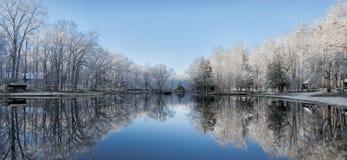 Snöig vinterträd reflexioner för sjö royaltyfria bilder