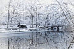 Snöig vinterträdreflexioner arkivfoto