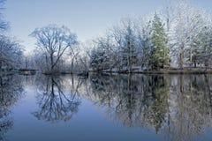 Snöig vinterträdreflexioner arkivbilder