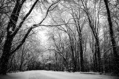 Snöig vinterväg Fotografering för Bildbyråer