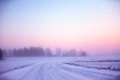 Snöig vinterväg dimmig morgonvinter Royaltyfria Bilder