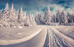 Snöig vinterväg i bergvägen Arkivbild