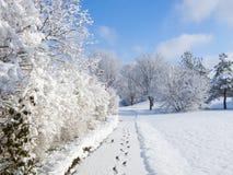 Snöig Walkway Arkivfoto