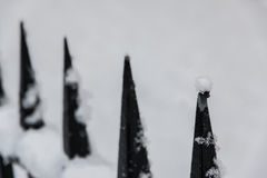 Snöjämvikt av naturen Arkivbild