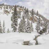 Snökuddar i en bergström Arkivfoto