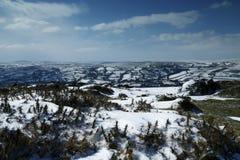 Snölandskap i den Dartmoor nationalparken Royaltyfria Bilder