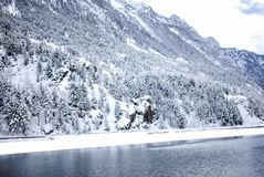 Snölandskap i vinter Royaltyfria Bilder