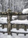 Snölandskap i vinter Arkivbilder