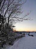 Snölandskapsolnedgång Arkivfoto