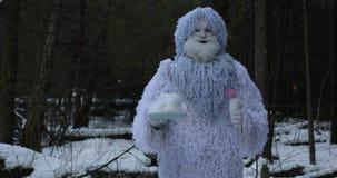 Snömansagatecken i längd i fot räknat för fantasi 4K för vinterskog utomhus- arkivfilmer