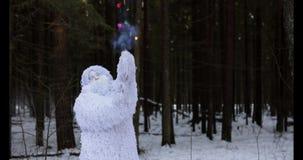 Snömansagatecken i längd i fot räknat för ultrarapid för fantasi för vinterskog utomhus- stock video