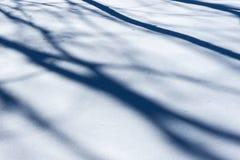 Snömodell Skuggor av träd på snöyttersidan Arkivbild