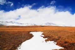 Snömontering och grässlätt Arkivfoton