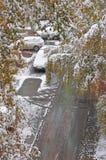 Snön och pölarna Royaltyfria Foton